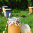 Jar full of delicious fresh honey piece of honeycomb and honey dipper in apiary - Foto de Stock