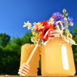 Jar full of delicious fresh honey, piece of honeycomb honey dipper and wild flowers in apiary against blue sky - Foto Stock