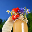 Jar full of delicious fresh honey, piece of honeycomb  and wild flowers in apiary against blue sky - Foto Stock