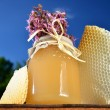 Jar full of delicious fresh honey, pieces of honeycomb and wild flowers in apiary against blue sky - Stockfoto