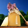 Jar full of delicious fresh honey, piece of honeycomb honey dipper and wild flowers in apiary against blue sky - Stockfoto