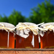 Three jars full of delicious fresh honey in apiary against blue sky — Stock Photo