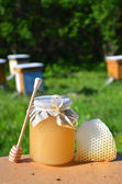 Jar full of delicious fresh honey piece of honeycomb and honey dipper in apiary — Stock fotografie
