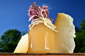 Jar full of delicious fresh honey, pieces of honeycomb and wild flowers in apiary against blue sky — Stock Photo