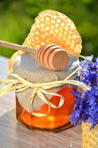 Jar full of delicious fresh honey piece of honeycomb honey dipper and wild flowers in apiary — Stock Photo