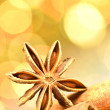 Christmas season, cinnamon sticks, anise star on bokeh background — Stock Photo