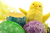 Little easter chicken and easter eggs isolated on white background — Stockfoto
