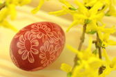 Traditional scratched handmade Easter egg and forsythia flowers — Stockfoto