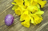 Beautiful scratched handmade Easter egg and daffodil flowers — Stock Photo
