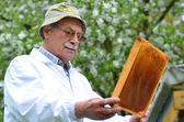 Senior beekeeper making inspection in apiary in the springtime — Stock fotografie