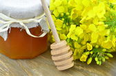 Jar of delicious honey in a jar with rapeseed flowers and honey dipper — Stock Photo