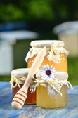 Jars full of delicious honey and bee pollen in apiary — Stockfoto