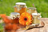 Jars full of delicious honey and bee pollen in apiary — Stock Photo