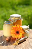 Frascos cheios de pólen delicioso de mel e abelhas no apiário — Fotografia Stock