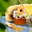 Jar full of delicious honey, honeycomb and bee pollen in apiary — Stock Photo #47841361