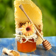 Jar full of delicious honey, honeycomb and bee pollen in apiary — Stock Photo #47841381