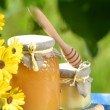 Jars full of delicious honey, honeycomb and bee pollen in apiary — Stock Photo #47841669