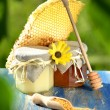 Jar full of delicious honey, honeycomb and bee pollen in apiary — Stock Photo #47841707