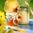 Jar full of delicious honey, honeycomb and bee pollen in apiary — Stock Photo #47841711