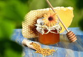 Jar full of delicious honey, honeycomb and bee pollen in apiary — Stok fotoğraf