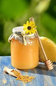 Jar full of delicious honey, honeycomb and bee pollen in apiary — Zdjęcie stockowe