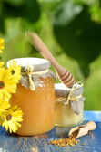 Jars full of delicious honey, honeycomb and bee pollen in apiary — Stockfoto