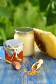 Jar full of delicious honey, honeycomb and bee pollen in apiary — Stock fotografie