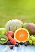 Vielfalt der früchte auf tisch im garten — Stockfoto