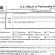 Foto de Stock  : Tax forms 1065