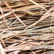 Thatch background — Stock Photo