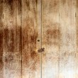 The old wood door  — Stock Photo