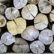 Stack of timber wooden background — Stock Photo