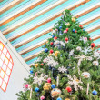 Stockfoto: Top of Christmas tree