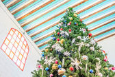 Top of Christmas tree — Stockfoto