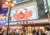 Osaka - oktober 29: dotonbori am 29. oktober 2013 in osaka, japa — Stockfoto