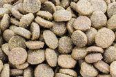 Close-up Dog food background — Zdjęcie stockowe