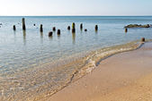 Sandy shore with wooden posts — Stock Photo