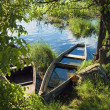 Stock Photo: Sunken boat on river in green vegetation