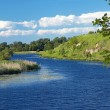 Landscape with river with the green shores — Stockfoto