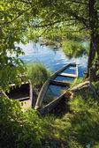 Sunken boat on the river in the green vegetation — Stock Photo