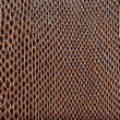 Brown artificial leather snake texture background — Stock Photo #26304649