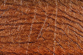 Brown synthetic leather with embossed — Stockfoto