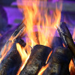 Fire burning — Stock Photo