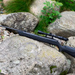 Pneumatic air rifle with optical sight — Stockfoto #34363383