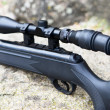 Pneumatic air rifle with optical sight — Stockfoto