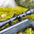 Pneumatic air rifle with optical sight — Photo