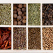 Сollection of different spices — Stock Photo