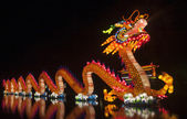 China dragon — Stockfoto
