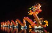 čína drak — Stock fotografie