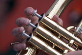 Detail of a wind instrument — Stock Photo